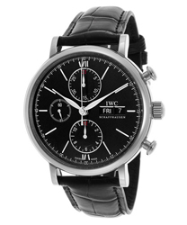 IWC Portofino Men's Watch Model IW391008
